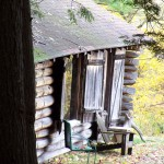 Chestnut Cabin in Fall