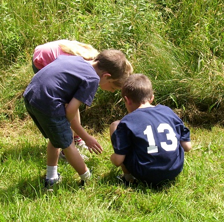 kids discovering nature