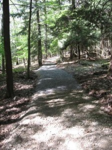 Accessible Trail Work